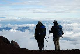 kije trekkingowe